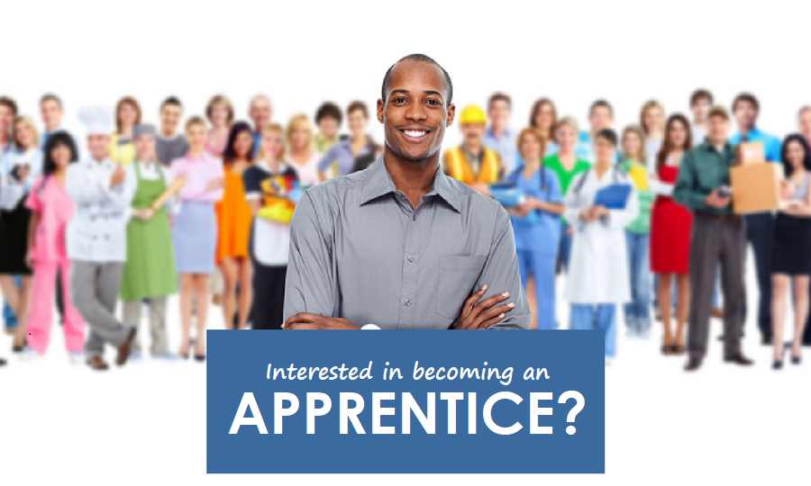 team-leading-apprenticeship